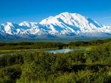 Reise Alaska Denali Nationalpark