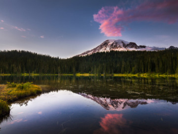 USA Reise - Mount Rainier