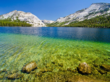 USA Rundreise: Tenaya Lake im Yosemite Nationalpark