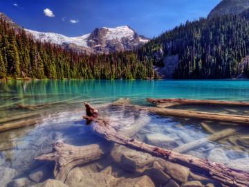 Reise durch den Westen USA: Yosemite Nationalpark