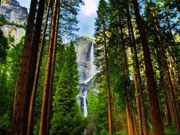 Reise Westen USA: Yosemite Waterfalls