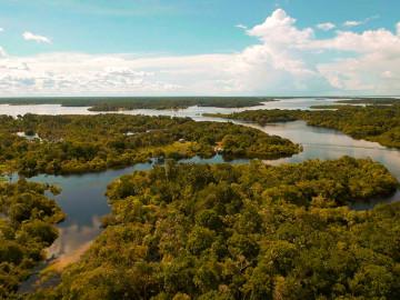 Blick auf den Amazonas von oben
