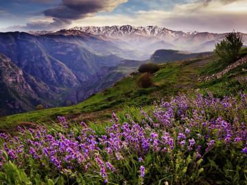 Blick auf Schlucht Vorotan Armenien - Copyright Vizarm Travel