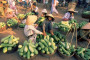 Hue ©ICB Indochina Services